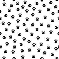 Cat paws - black and white