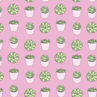 Suculents pattern in pink